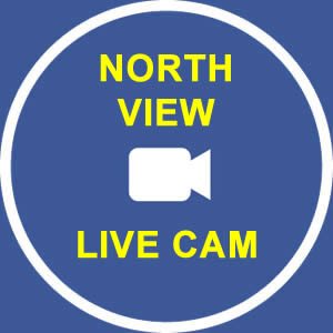 Denali View North Live Cam