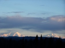 denali-view-adventures-100 1898
