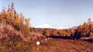denali-view-adventures-runway-fall