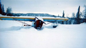 denali-view-adventures-winter1